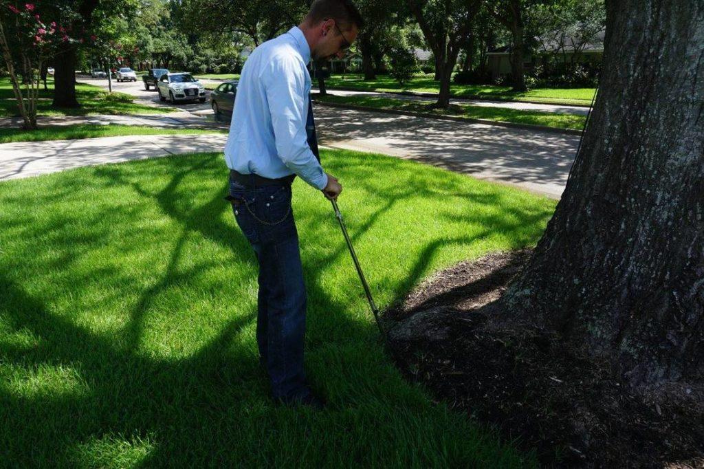 Arborist Consultations-Palm Springs Tree Trimming and Tree Removal Services-We Offer Tree Trimming Services, Tree Removal, Tree Pruning, Tree Cutting, Residential and Commercial Tree Trimming Services, Storm Damage, Emergency Tree Removal, Land Clearing, Tree Companies, Tree Care Service, Stump Grinding, and we're the Best Tree Trimming Company Near You Guaranteed!